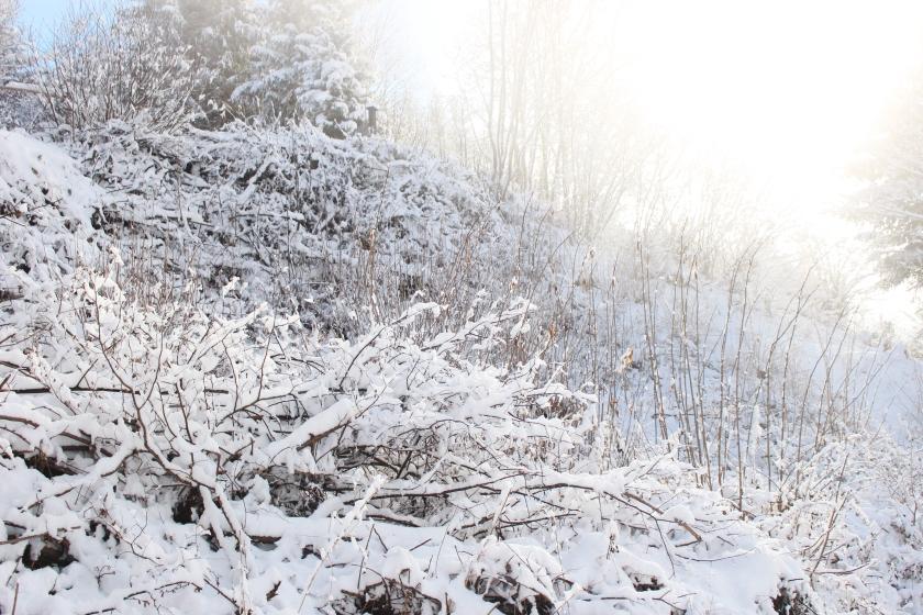 Schnee Schneelandschaft Österreich Austria snow carinthia Kärnten vanillaholica.com