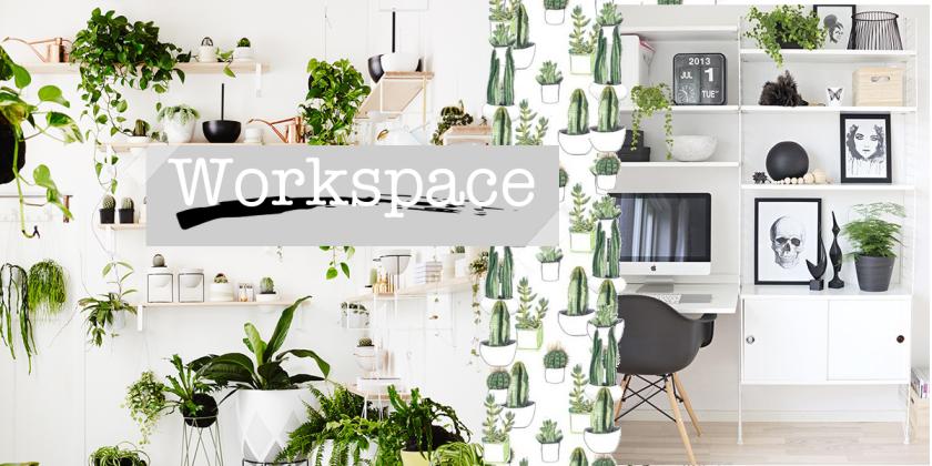 grün, Pflanzen, Demo, Inspiration, Inspo, Interior, vanillaholica.com, Nachhaltigkeit, Kaktus,